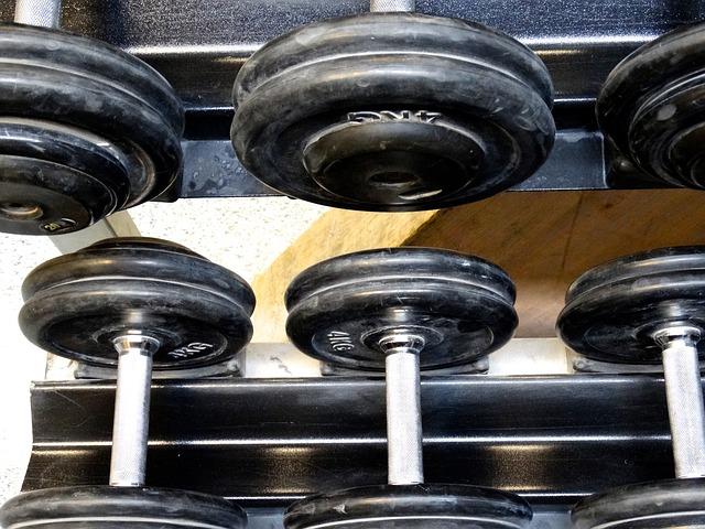 proteine muskelaufbau